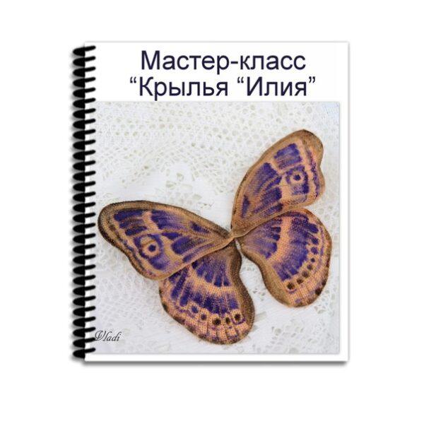 """Обложка Мастер-класс """"Крылья Илия"""""""