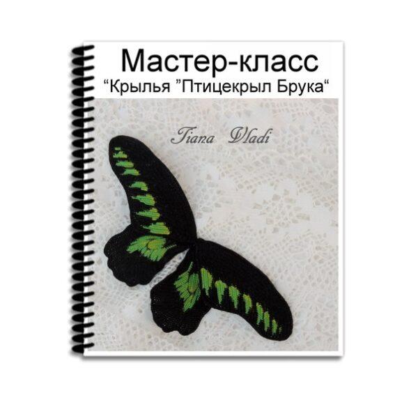 """Обложка Мастер-класс """"Крылья Птицекрыл Брука"""""""